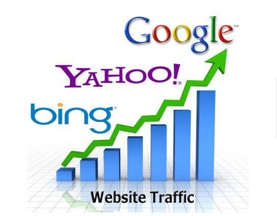 I will get You 300000 Website Traffic