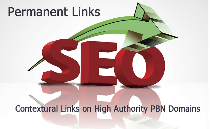 give you 100 PBN Setup with Blog Posts for Top 5 Rankings