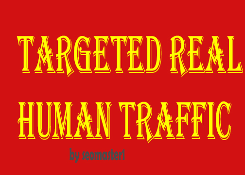 20000 Human visitors/traffic to your Web/Blog Adsense...