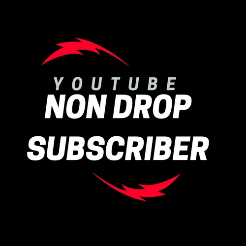 HQ 220 You+tube Real non drop channel Subscriber fastest offer of Buyers