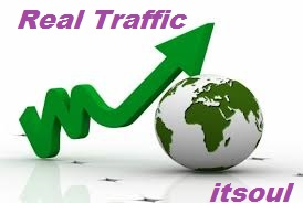 Drive 25000 REAL Traffic/visitor to your website