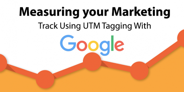 Give your Google UTM Tag Code on your website or Blog