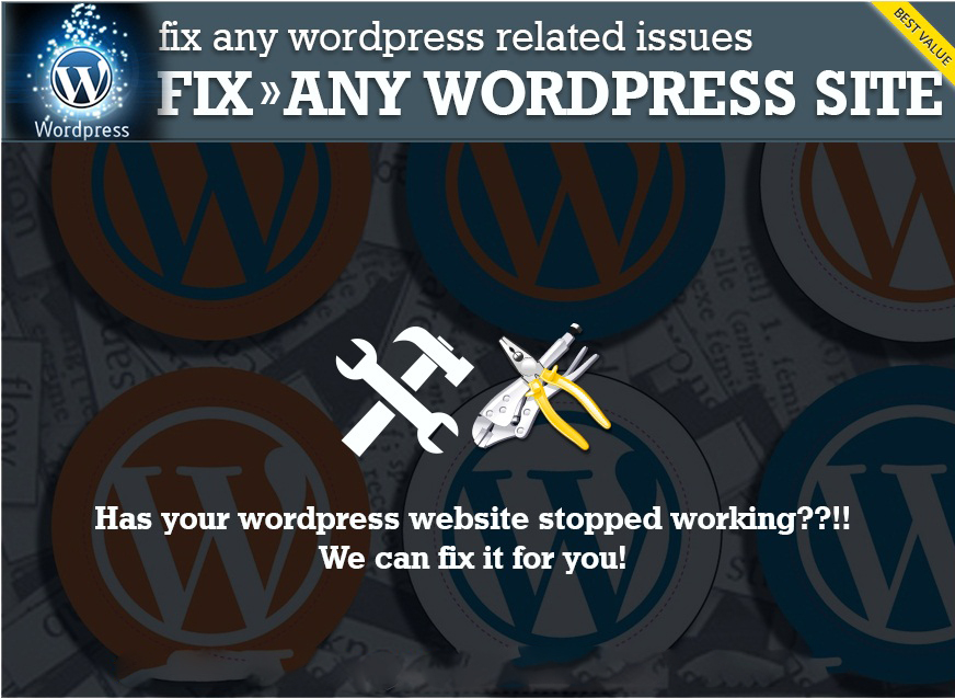 Help to solve any issues,errors or problem on Wordpress Website