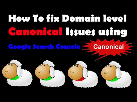 I will solution your canonical issue fixing problem