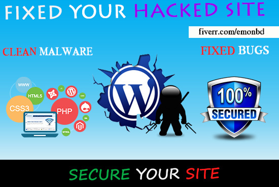 I will clean remove malware and malicious code from your site