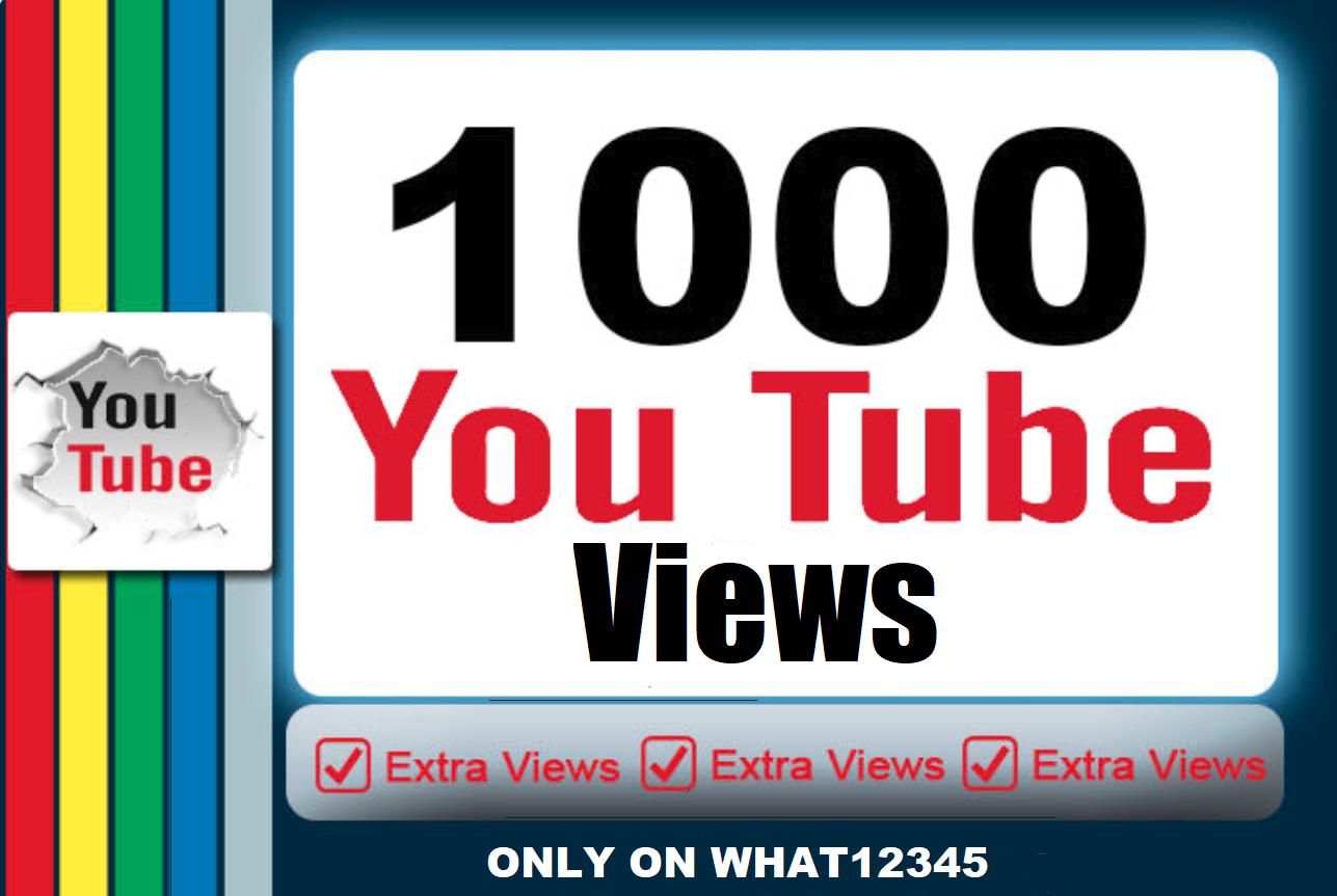 1,000+ High Quality U Tube Views