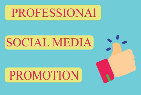 Professionall Social Media Promotion