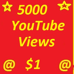 Split 500 YouTube subscribers non drop guaranteed or 2000 YT Likes
