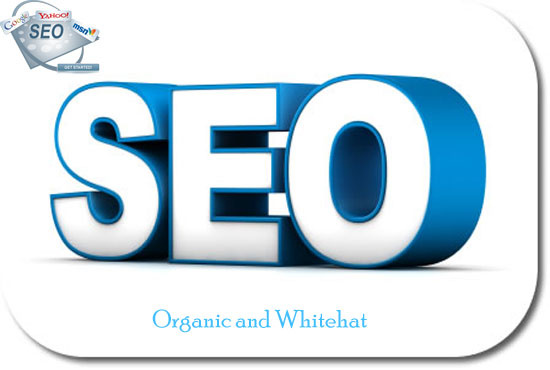 I wil skyrocket your rank in in Google, 50 PR10 Niche Backlinks, 40days SEO