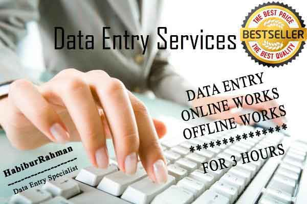 Special I do any kind of 10 Pages data entry work