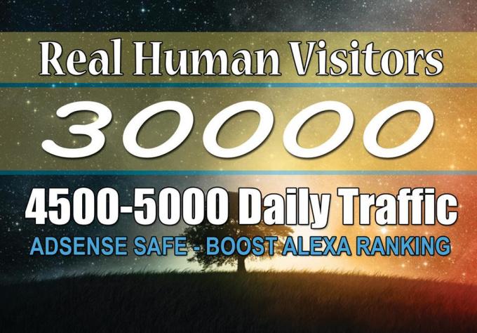 30000 USA Website Vistors FAST EASY BOOST ALEXA AND GOOGLE RANK CHEAPEST