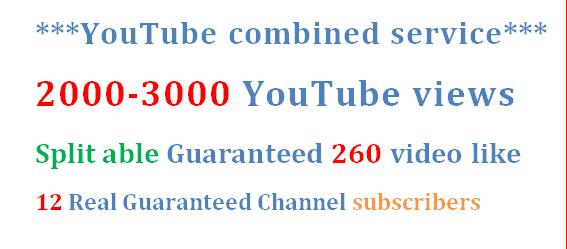 1000-1500 High Quality  U-Tube v iews + 100 HQ vi deo lik e & 10 subscribers