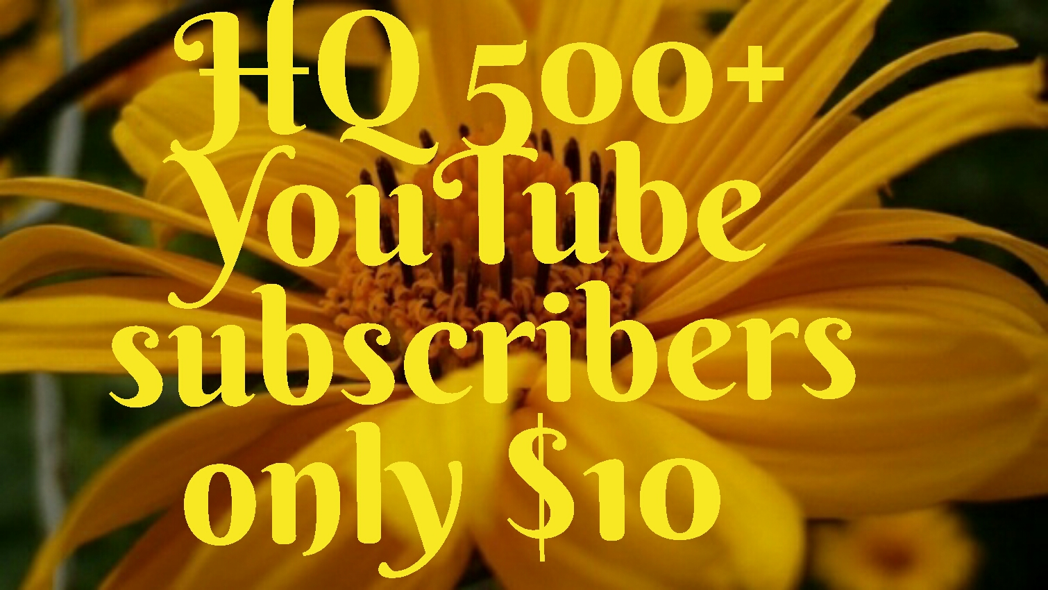 Real 600+ HQ YouTube subscribers non dorp first delivery