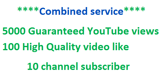Add Up To 600 Guaranteed You Tube v ideo l ike within 24 hours