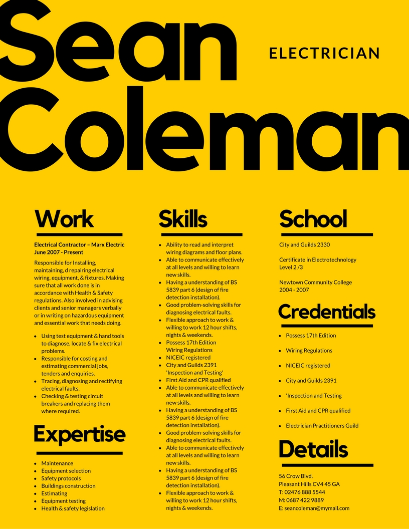 create a bold, stylish, professional and unique visual CV to help you land your dream job!