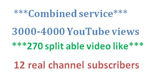 4000-4500 HR YouTube views + 300 YouTube video like