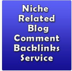 I will do 50 manual blog comment to related niche in 5 days