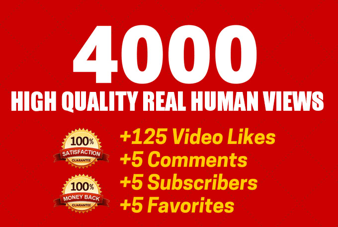 Fast 1000 you tube video view or 200 video likes