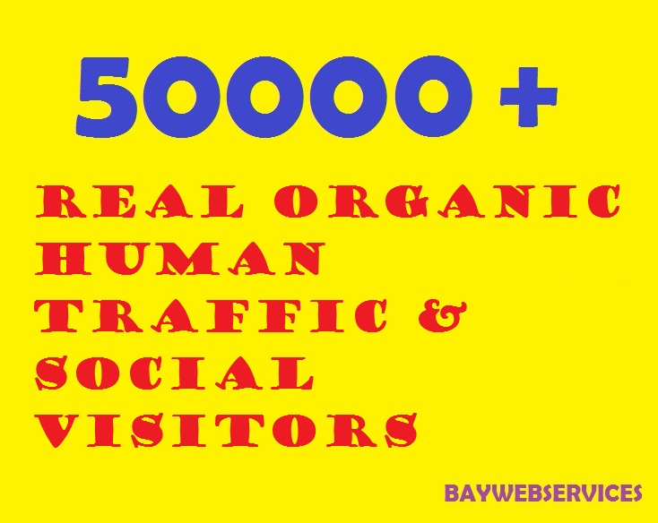 50000 Real Organic Human Traffic & Social Visitors 10 days
