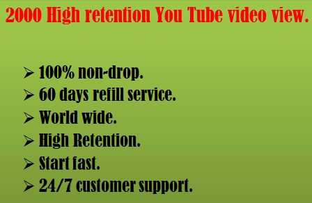 1000 high Retention You Tube video view instant start