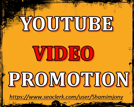 YouTube Video Marketing and Social Media Basic Promot...