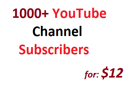 get 1000 Non Drop YouTube Channel Subscribers