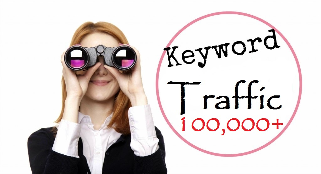 100,000+ Keyword Driven traffic