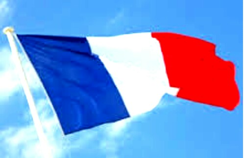 French guest post Backlinks