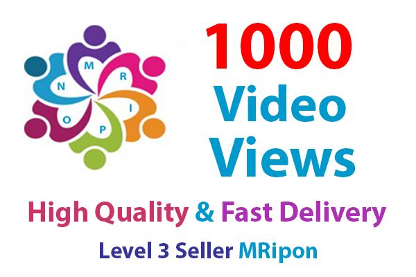 1000 High Retention Video Views