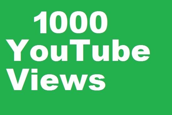 YouTube 1000+ desktop views in 12 hour