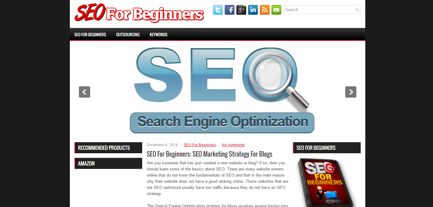 SEO For Beginners Niche Blog Script