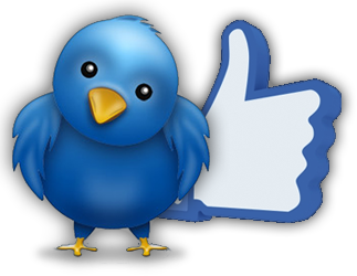 400 Facebook Fanpage likes OR 1300 Twitter Marketing ... for $4