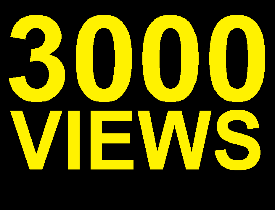 3000 High Retention Non Drop Youtube Views Fast