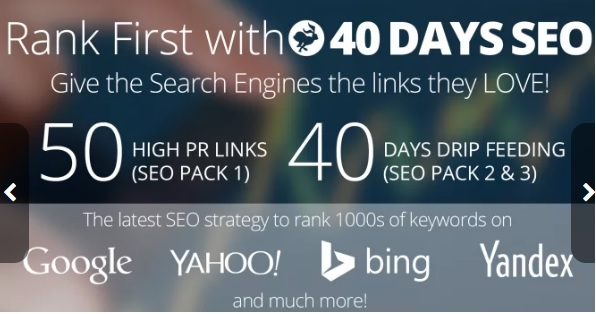 Rank First in Google, 55-PR10 Backlinks and 40 days SEO Campaign