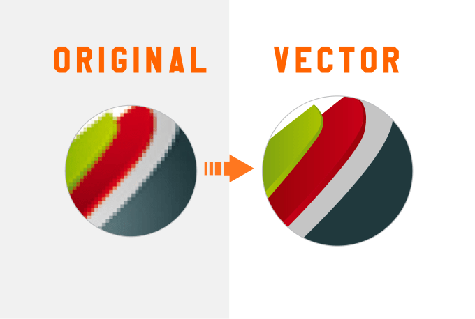 do vector tracing of any logo in few hours