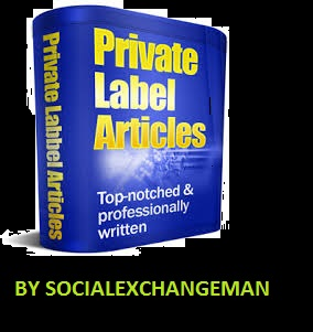 Get over 10000+ PLR articles ANY NICHE