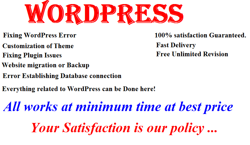 fix your WordPress website issue,  Error