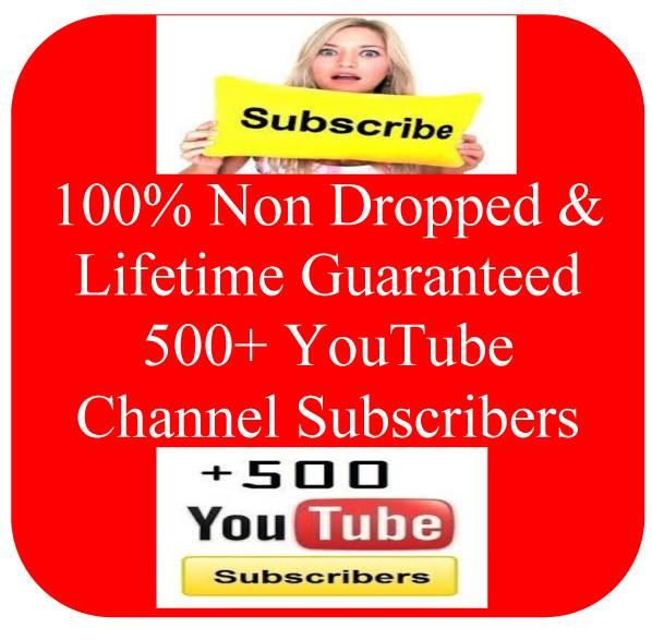 Real Human 1000+ You Tube Subscribers or 10,000 Views within 48 Hours