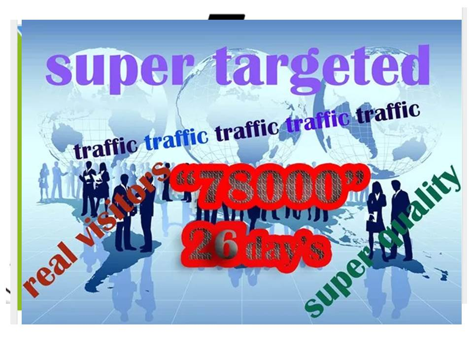 Provide, Daily, 3k, Real,  Social,  Website Traffic, Visitors