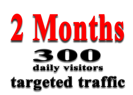 get 2 Months of Targeted Web Traffic