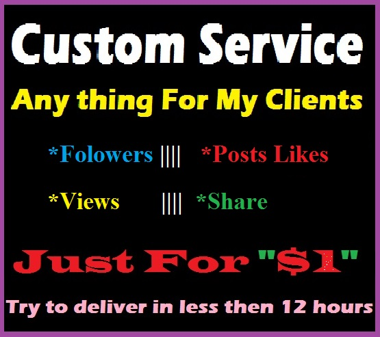 Custom service for seoclerk's Clients
