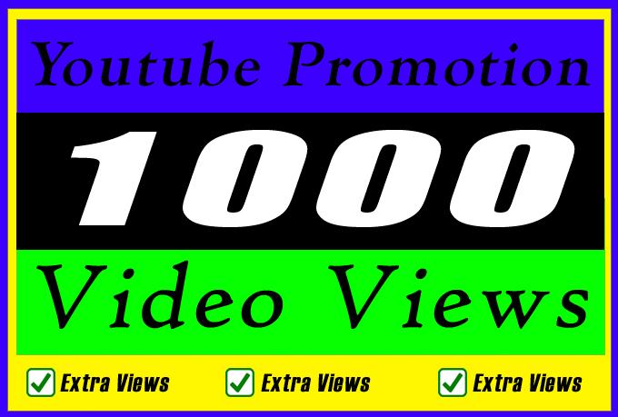 Organic YouTube Video Marketing Promotion