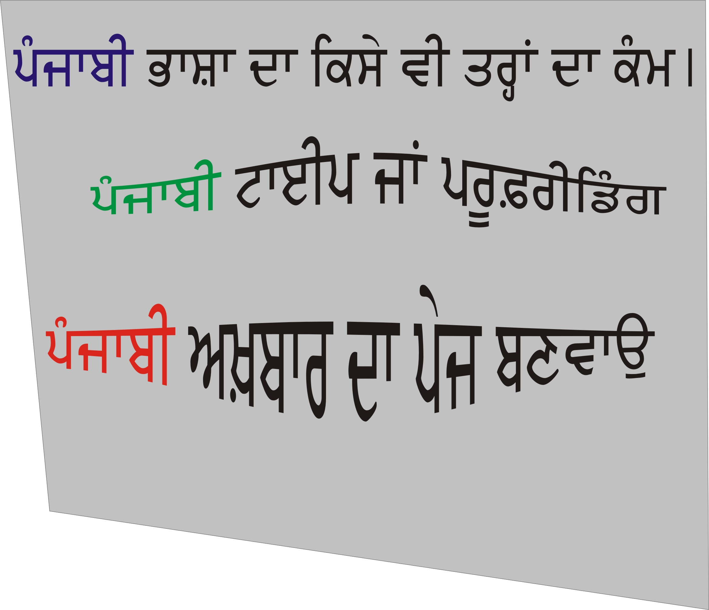 punjabi translator into punjabi language