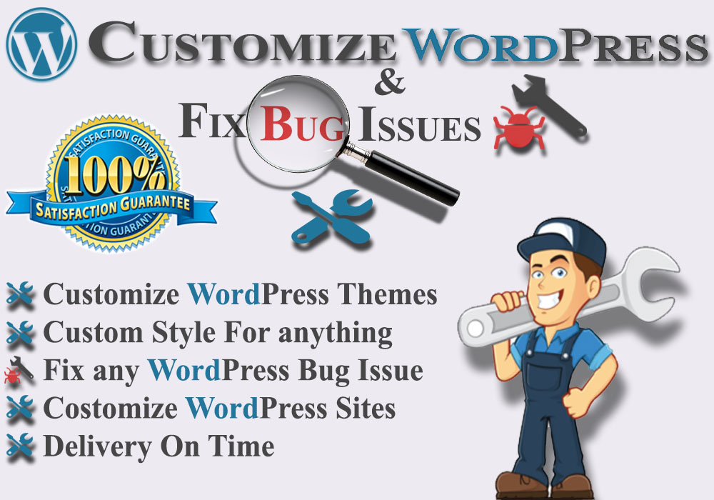 Install and customize WordPress theme and fixes bug issues