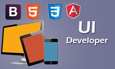 Web Application Development & UI Development with Responsive for all Devices.