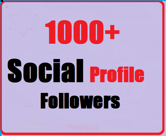 Add 1000+ High Quality Social Followers instant