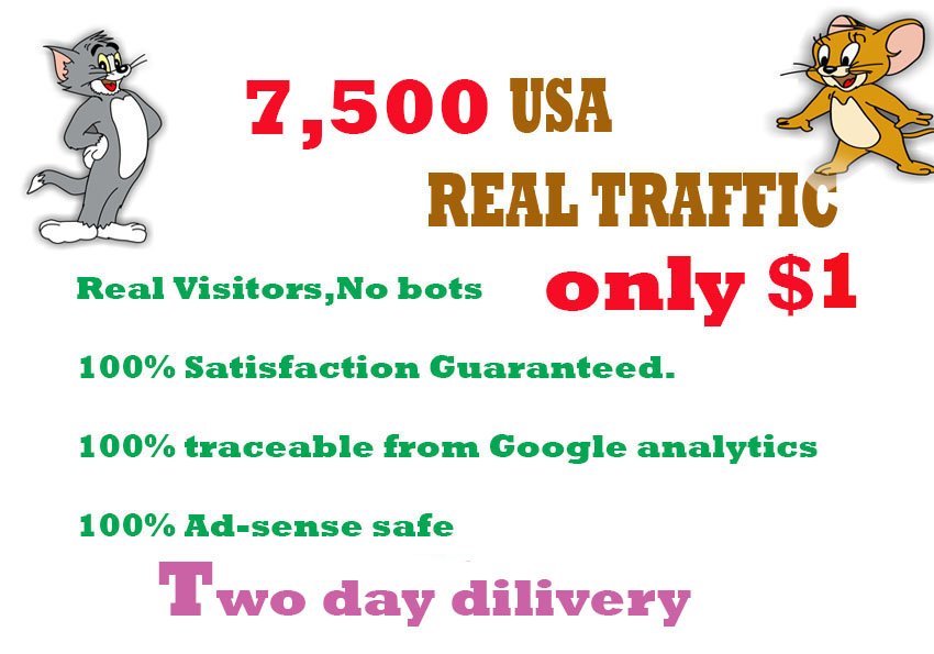 Drive 7,500 real human USA web TRAFFIC in 48 hours