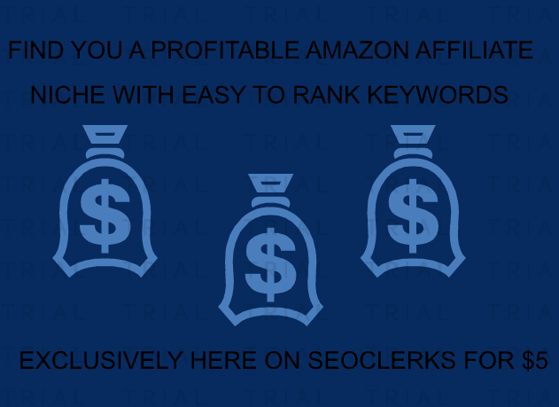 Find you a profitable AMAZON affiliate niche