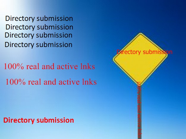 I get 100 approved directory submission good link  for