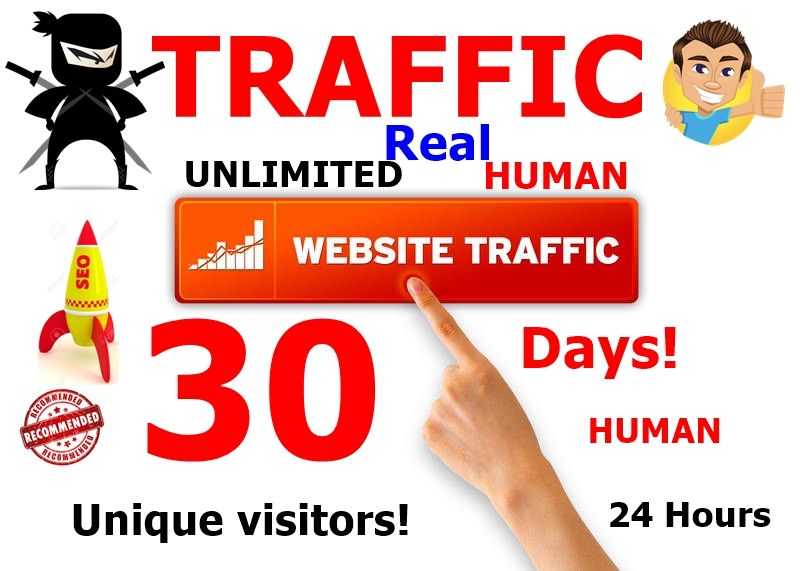 USA Unlimited real human Website TRAFFIC Every Month